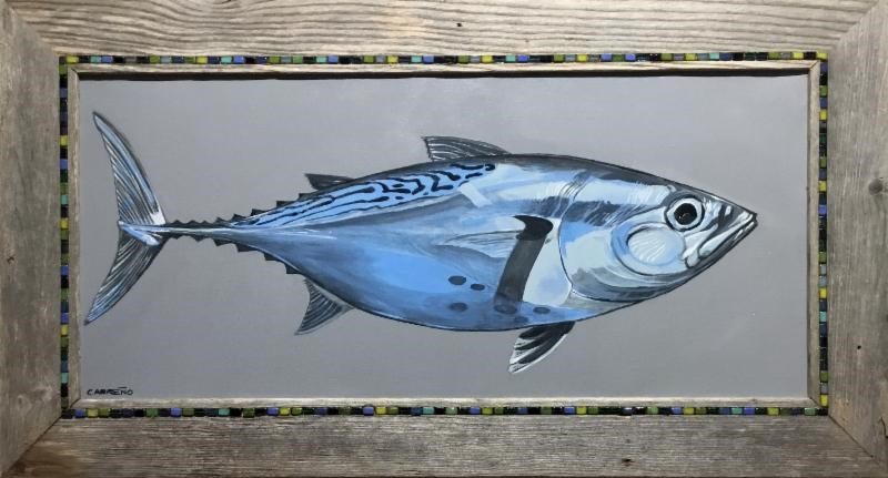 False_albacore_framed