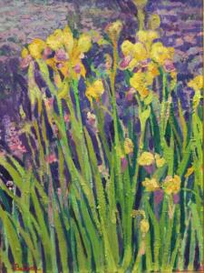 YELLOW IRIS  |  Oil on canvas  |  14 x 18  |  29.5 x 23.5 Framed  |  $8000