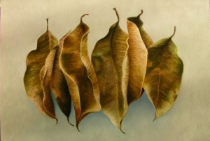 BIO-LOGIC LEAF #6  | 24 x 36 |  oil on panel  |  28.25 x 40.25 Framed  |  $2400