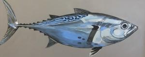FALSE ALBACORE     Acrylic on canvas     30 x 13.5     36 x 20 Framed     $1000