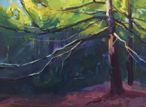 FOREST LIGHT  |  Oil on  panel  |  12 x 16  |  13 x 17 Framed  |  $875
