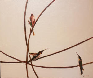 HUMMERS |  Oil on canvas  |  20 x 24 |  22 x 26 Framed  |  $2200