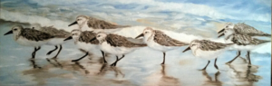 SANDPIPER SOIREE     Oil on canvas     12 x 36     13 x 37 Framed     $1800