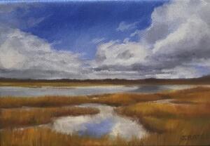 CAPTURED SKY     5 x 7     Oil on canvas     6.5 x 8.5 Framed     $350