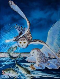 SNOWY OWL STRIKE     26 x 20     Pastel on sanded paper     33 x 27 Framed     $1450